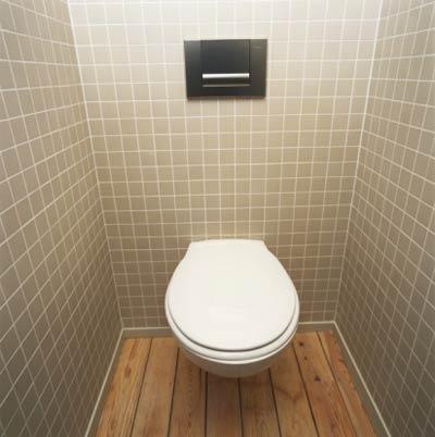 http://prayerandprophecy.files.wordpress.com/2009/06/toilet-new.jpg
